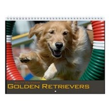 Golden Retriever Agility Wall Calendar