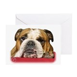 Bulldog 9W099D-039 Greeting Cards (Pk of 10)