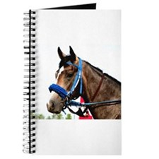 Race Horse Journal