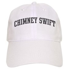 Chimney Swift (curve-grey) Baseball Cap