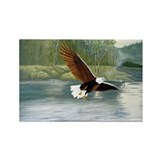 American Bald Eagle Flight Rectangle Magnet