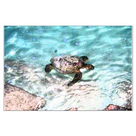 Swimming Sea Turtle Large Poster