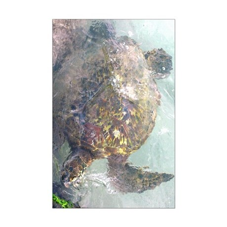 Watercolor Turtle Mini Poster Print