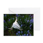 Wildflowers Greeting Cards (Pk of 20)