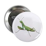 "Praying Mantis 2.25"" Button"