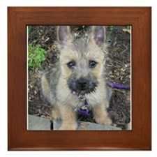 "Cairn Terrier ""Emma"" Framed Tile"