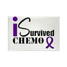 I Survived Chemo Rectangle Magnet