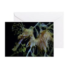 Sea Dragons by Karen Greeting Card
