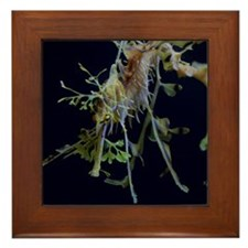 Sea Dragons by Karen Framed Tile