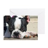 Sleeping Boston Terrier Greeting Cards (Pk of 20)