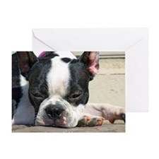 Sleeping Boston Terrier Greeting Card