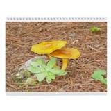 Fun Fungus Wall Calendar