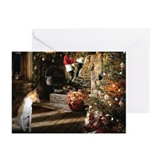 Basenji Christmas Cards (Pk of 20)