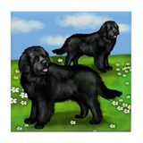 Newfoundland Dogs Park Tile Coaster