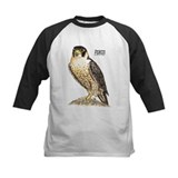 Peregine Falcon Bird Tee