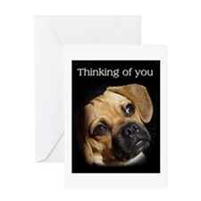 "Mr. Puggle is, ""Thinking of You."" Greeti"