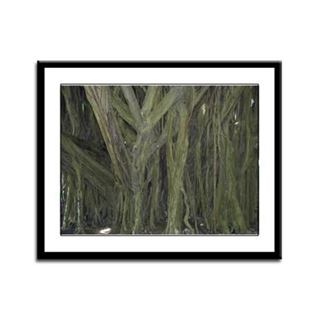 Old Banyan Tree Framed Panel Print