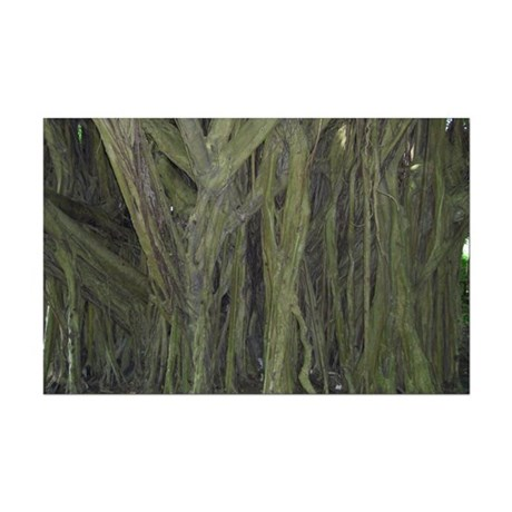 Old Banyan Tree Mini Poster Print