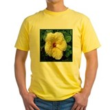 Yellow Hibiscus T
