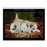 Great Pyrenees V #6, Wall Calendar 2013