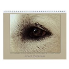 Great Pyrenees Wall Calendar 2015, Family Fun