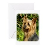 Australian Silky Terrier 9B15D-05 Greeting Cards (