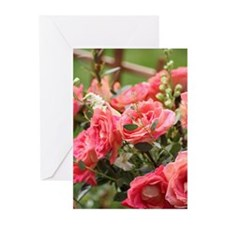 Unique Rose photography Greeting Cards (Pk of 10)