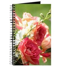 Funny Rose photography Journal