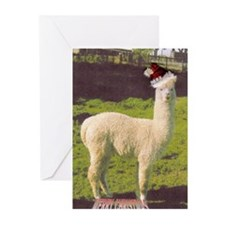 Pineridge Plains Alpacas Greeting Cards (Pk of 10)