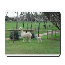 Pineridge Plains Alpacas Mousepad