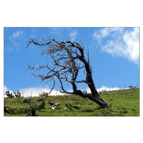 Windblown Tree Large Poster