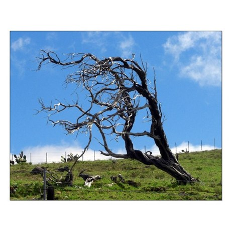 Windblown Tree Small Poster