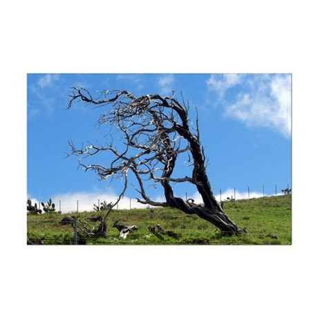 Windblown Tree Mini Poster Print