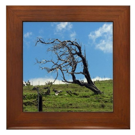 Windblown Tree Framed Tile