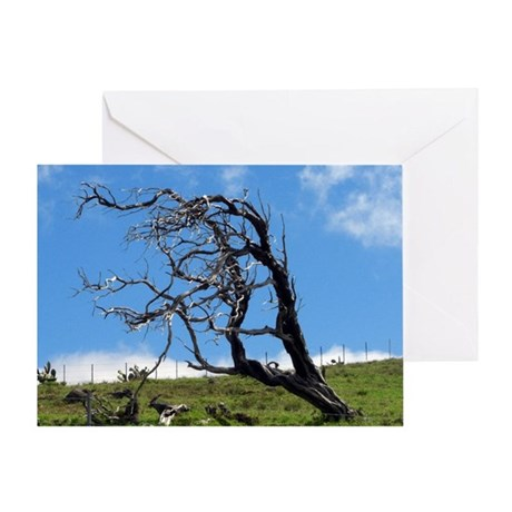 Windblown Tree Greeting Card