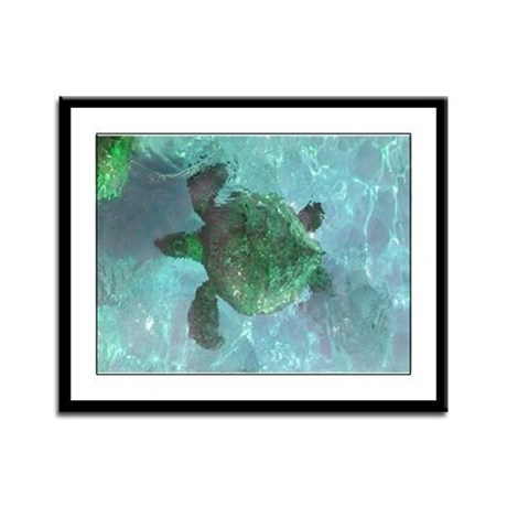 Green Sea Turtle Framed Panel Print