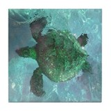 Green Sea Turtle Tile Coaster