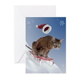 Cat christmas Greeting Cards