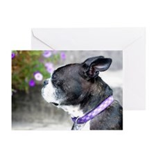 Boston Terrier Pup Greeting Cards (Pk of 20)