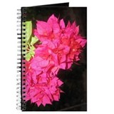 Bougainvillea Journal