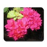 Bougainvillea Mousepad