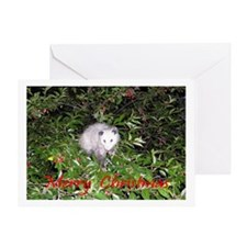 Opossum Cherry Tree Greeting Card