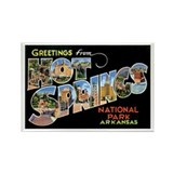 Hot Springs Arkansas Rectangle Magnet (10 pack)