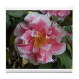 Camellias Tile Coaster