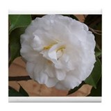 Cute Camellias Tile Coaster