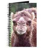 Dromedary Close-Up Journal
