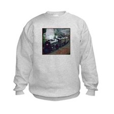 Train 5 Years Old Sweatshirt