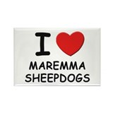 I love MAREMMA SHEEPDOGS Rectangle Magnet (10 pack