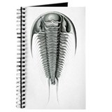 Trilobite 2 Journal