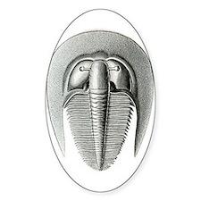 Trilobite Decal
